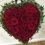 röda rosor stor